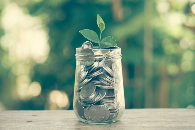 Plant growing from money jar