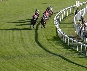 curriculum development comes from the latin word meaning race course